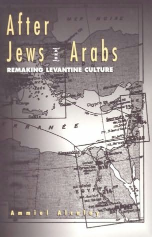 book cover of After Jews and Arabs